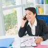 consulta telefonica